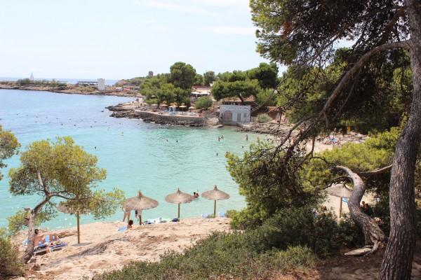 les 4 bonnes vraies raisons d'aller à Majorque