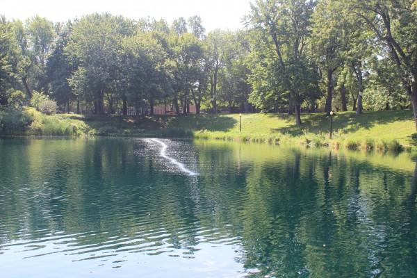 montreal parc lafontaine lac