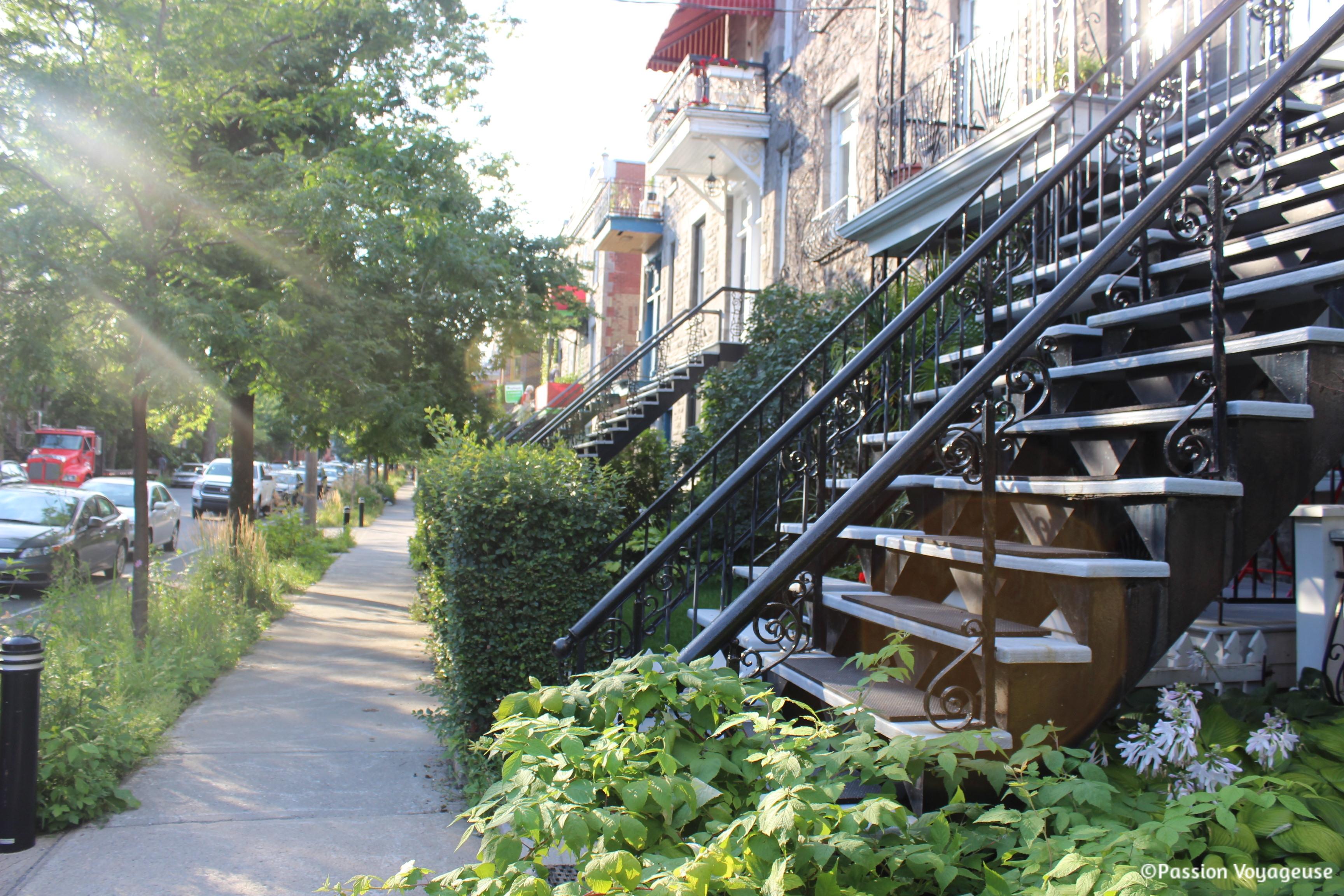 quebec montreal escalier