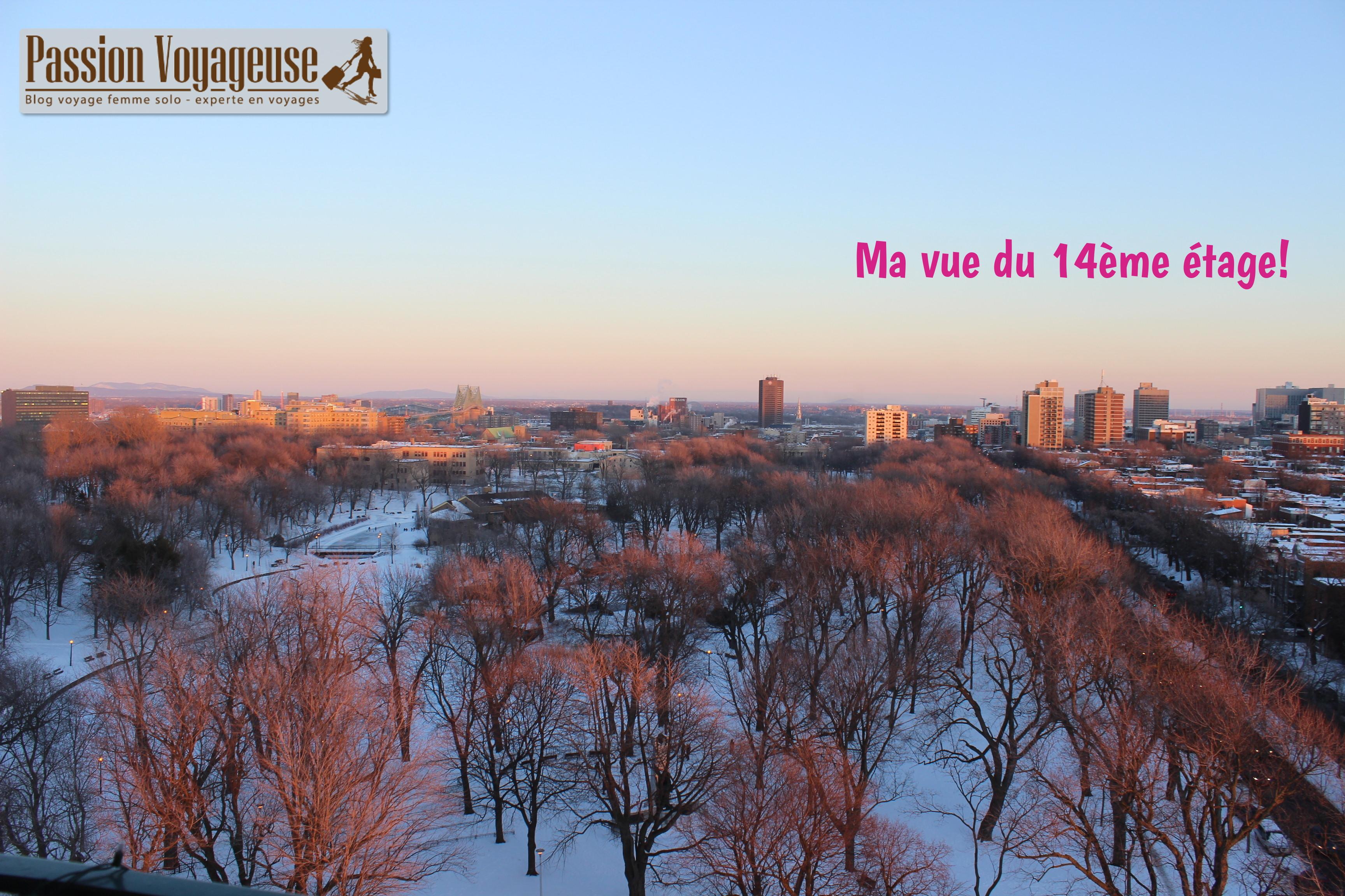 parc lafontaine vue hiver coucher de soleil