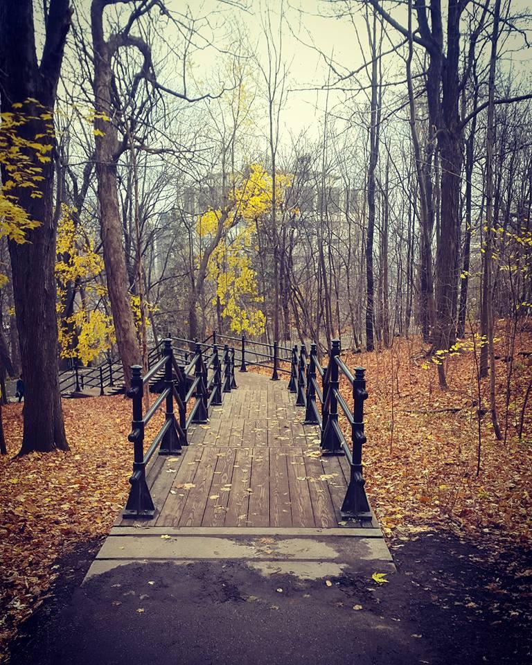 parc mont royal automne