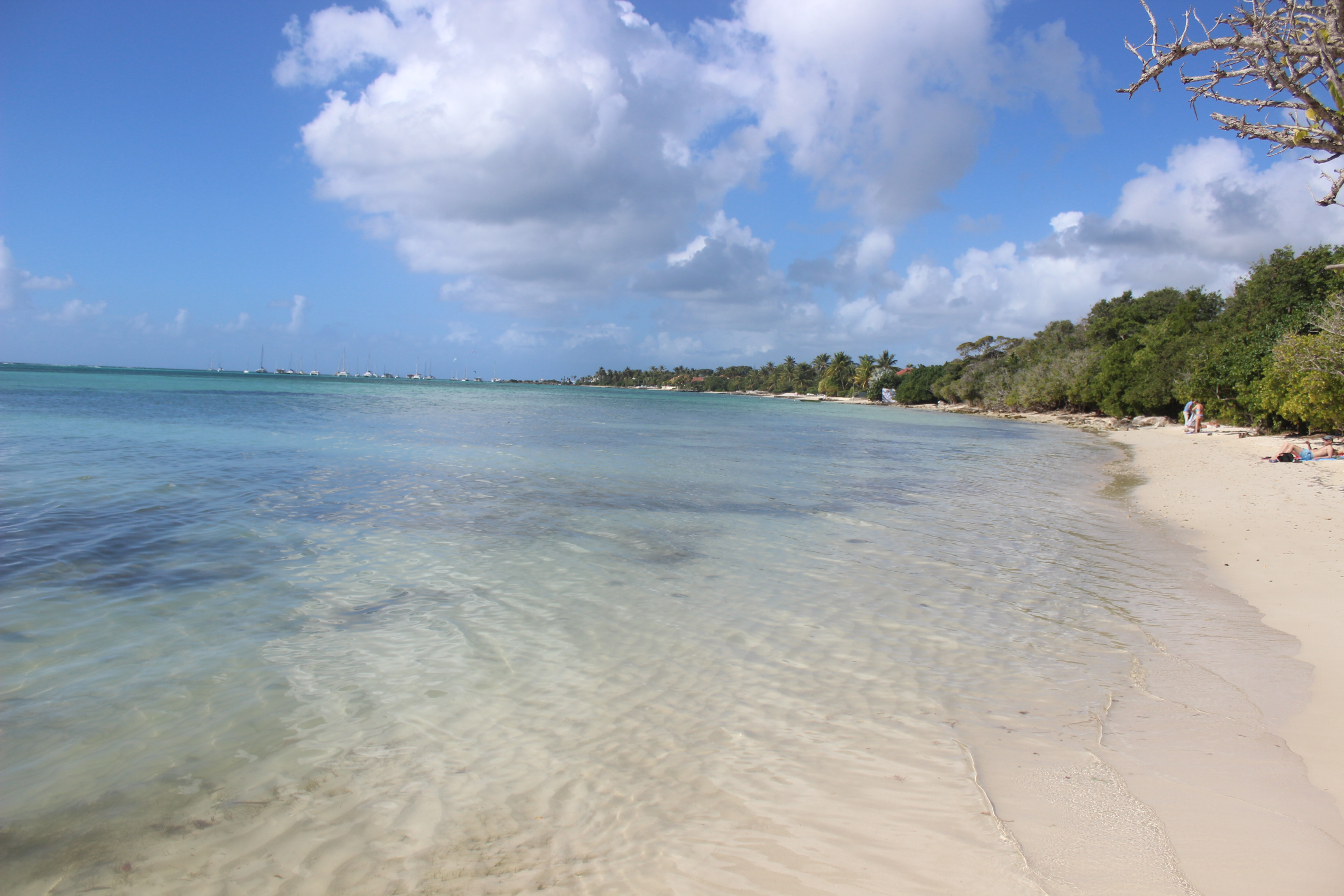 Anse Kanouanne Guadeloupe