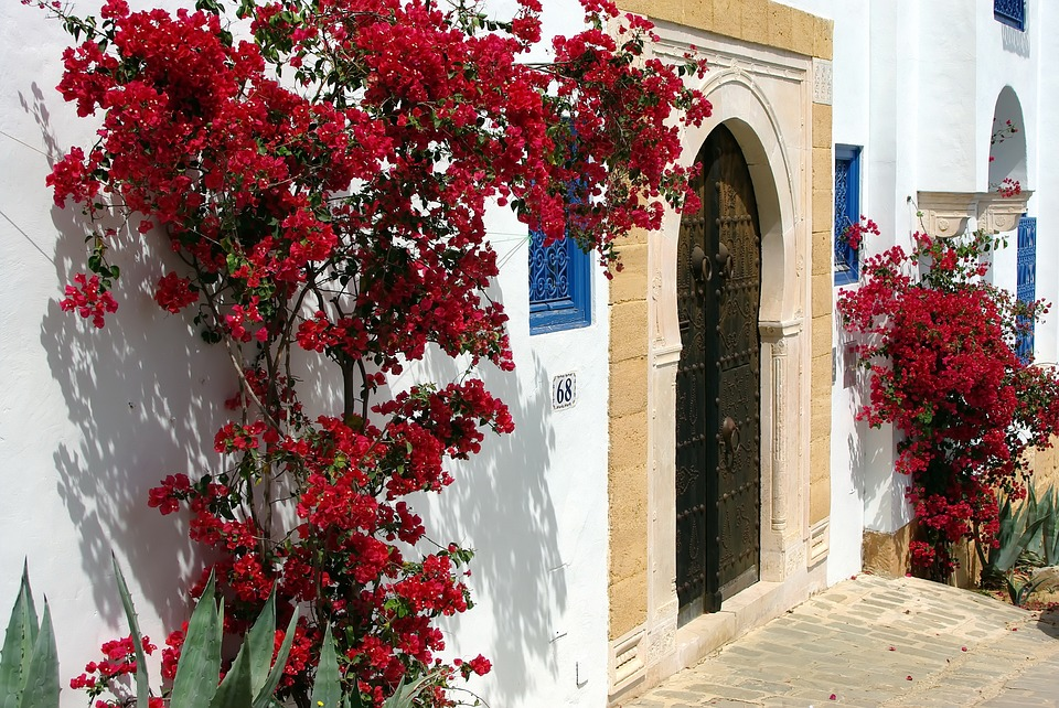 tunisie village ruelles